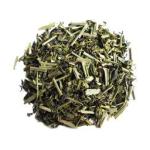 sublime-green-tea